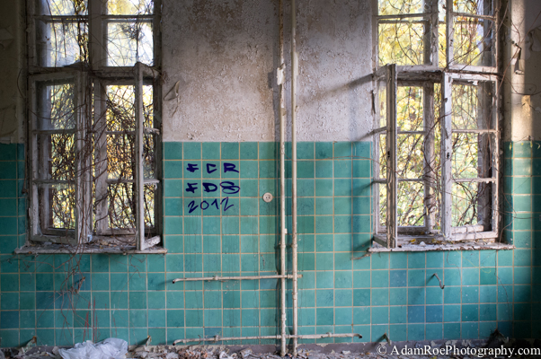 Overgrown windows in Beelitz